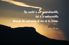 The world is not comprehensible